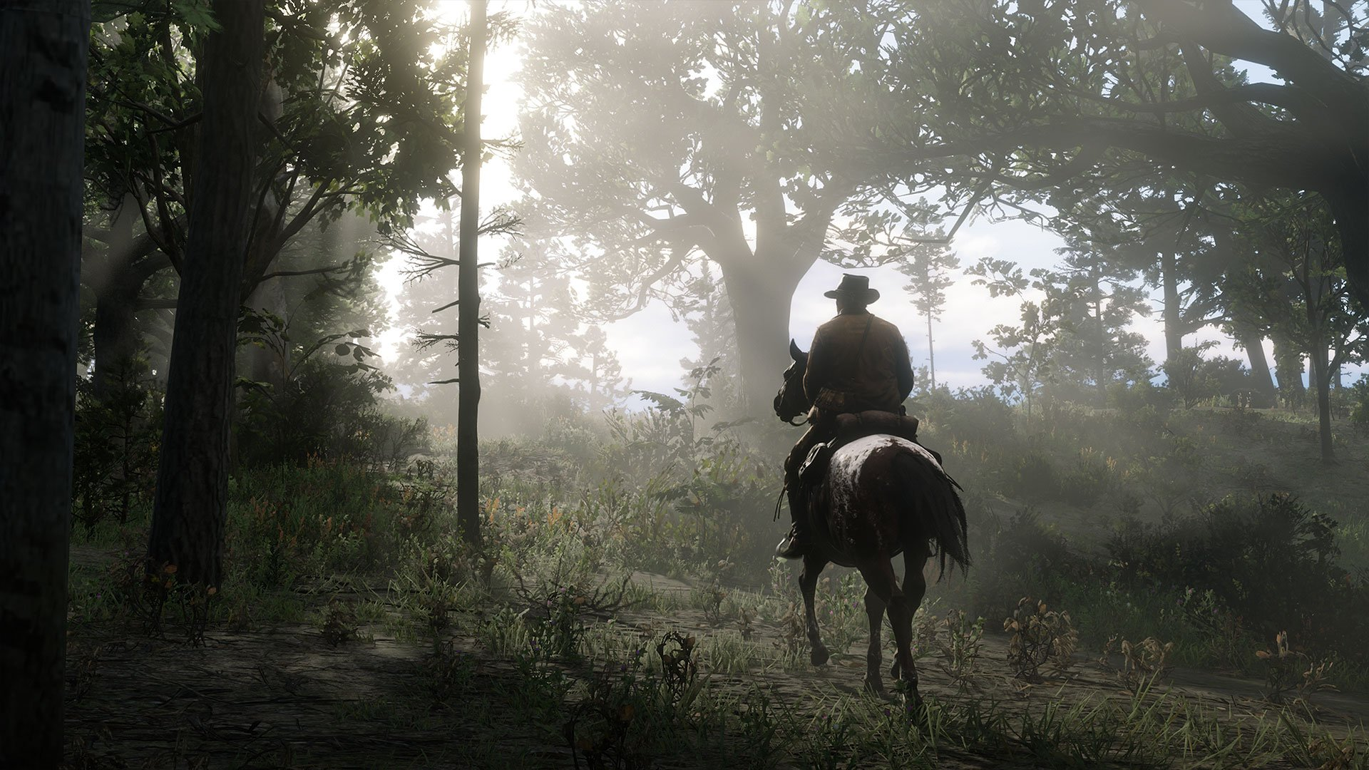 Red Dead Online plant location guide – challenge plant locations | 2game
